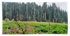 Bath Towel featuring the photograph Tharps Log Meadow by Kyle Hanson