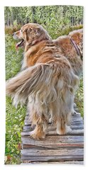 The Adventure Continues Bath Towel