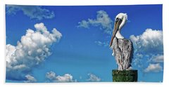 Hand Towel featuring the photograph The American Brown Pelican by Paul Mashburn