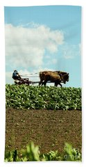 The Amish Farmer With Horses In Tobacco Field Bath Towel