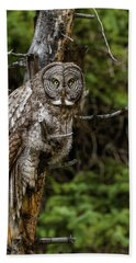 The Captivating Great Grey Owl Hand Towel by Yeates Photography