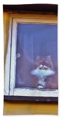 The Cat In The Window Hand Towel by Anne Kotan