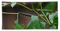 Hand Towel featuring the photograph The Caterpillar 2 by Cendrine Marrouat