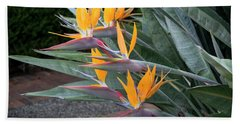 The Crane Flower - Bird Of Paradise  Bath Towel
