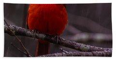The Curious Cardinal  Hand Towel