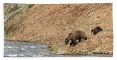 Bath Towel featuring the photograph The Danger Has Passed by Cheryl Strahl