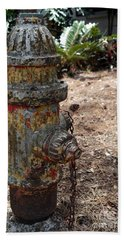Bath Towel featuring the photograph The Doggy Did It by Irma BACKELANT GALLERIES