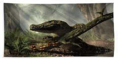 The Dragon Of Brno Hand Towel