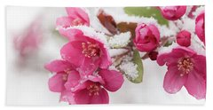 Hand Towel featuring the photograph The End Of Winter by Ana V Ramirez