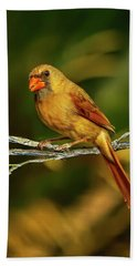 The Female Cardinal Hand Towel