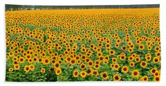 The Field Of Suns Hand Towel