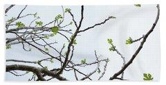 The Fig Tree Budding Hand Towel by Yoel Koskas