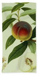 The Galande Peach Hand Towel by William Hooker