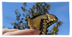 The Glorious Swallowtail  Hand Towel