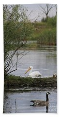 Hand Towel featuring the photograph The Goose And The Pelican by Alyce Taylor