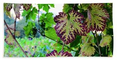 Hand Towel featuring the photograph The Grape Vine by Corinne Rhode