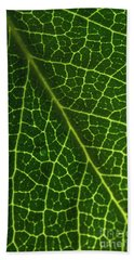 Bath Towel featuring the photograph The Green Network by Ana V Ramirez