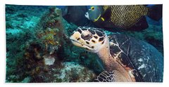 The Green Turtle And The Angelfish Bath Towel
