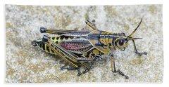 The Hopper Grasshopper Art Hand Towel by Reid Callaway