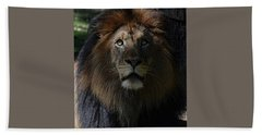 The King In Awe Hand Towel by Ronda Ryan