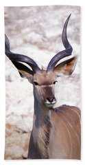 The Kudu Portrait 2 Bath Towel by Ernie Echols