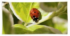 The Ladybug  Hand Towel