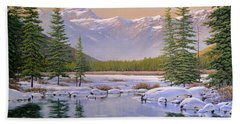 The Last Days Of Winter Hand Towel