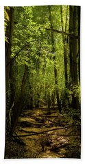 The Light In The Forest Hand Towel