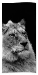The Lioness Sitting Proud Hand Towel