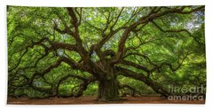 The Magical Angel Oak Tree Panorama  Hand Towel