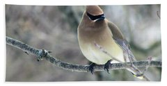 The Masked Cedar Waxwing Bath Towel