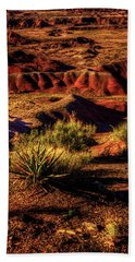 The Painted Desert From Kachina Point Hand Towel