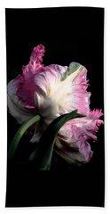 The Parrot Tulip Queen Of Spring Hand Towel