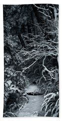 The Path To The Frozen Forest In The Argentine Patagonia Hand Towel