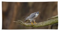 The Peregrine Falcon Bath Towel