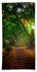 The Ramble In Central Park Hand Towel by Mark Andrew Thomas