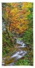 Cascades And Waterfalls Bath Towel