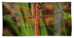 The Red Skimmer Dragonfly Bath Towel