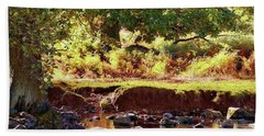The River Lin , Bradgate Park Hand Towel
