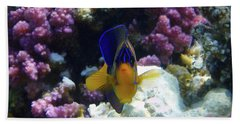 The Royal Angelfish Bath Towel