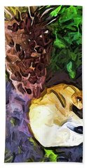 The Sleeping Cat And The Dead Tree Fern Hand Towel