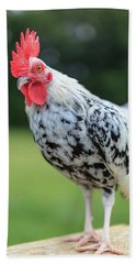 The Speckled Chicken Bath Towel