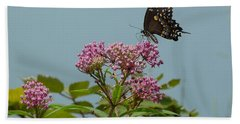 The Spicebush Swallowtail Of Prettyboy Reservoir Hand Towel by Donald C Morgan