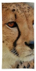 The Stare Hand Towel