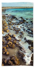 The Stromatolite Family Enjoying Its 1277500000000th Sunset Bath Towel