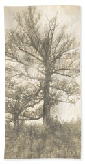 The Sycamore Hand Towel