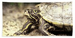 The Turtle Hand Towel by Dan Sproul