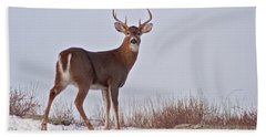 The Watchful Deer Bath Towel