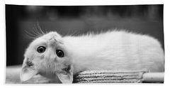 The White Kitten Bath Towel
