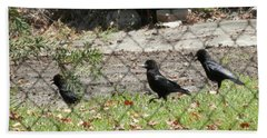 Thirsty Trio Of Ravens Hand Towel